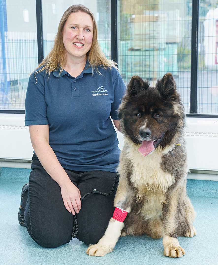 Caring vet is top of the class after completing Masters with distinction
