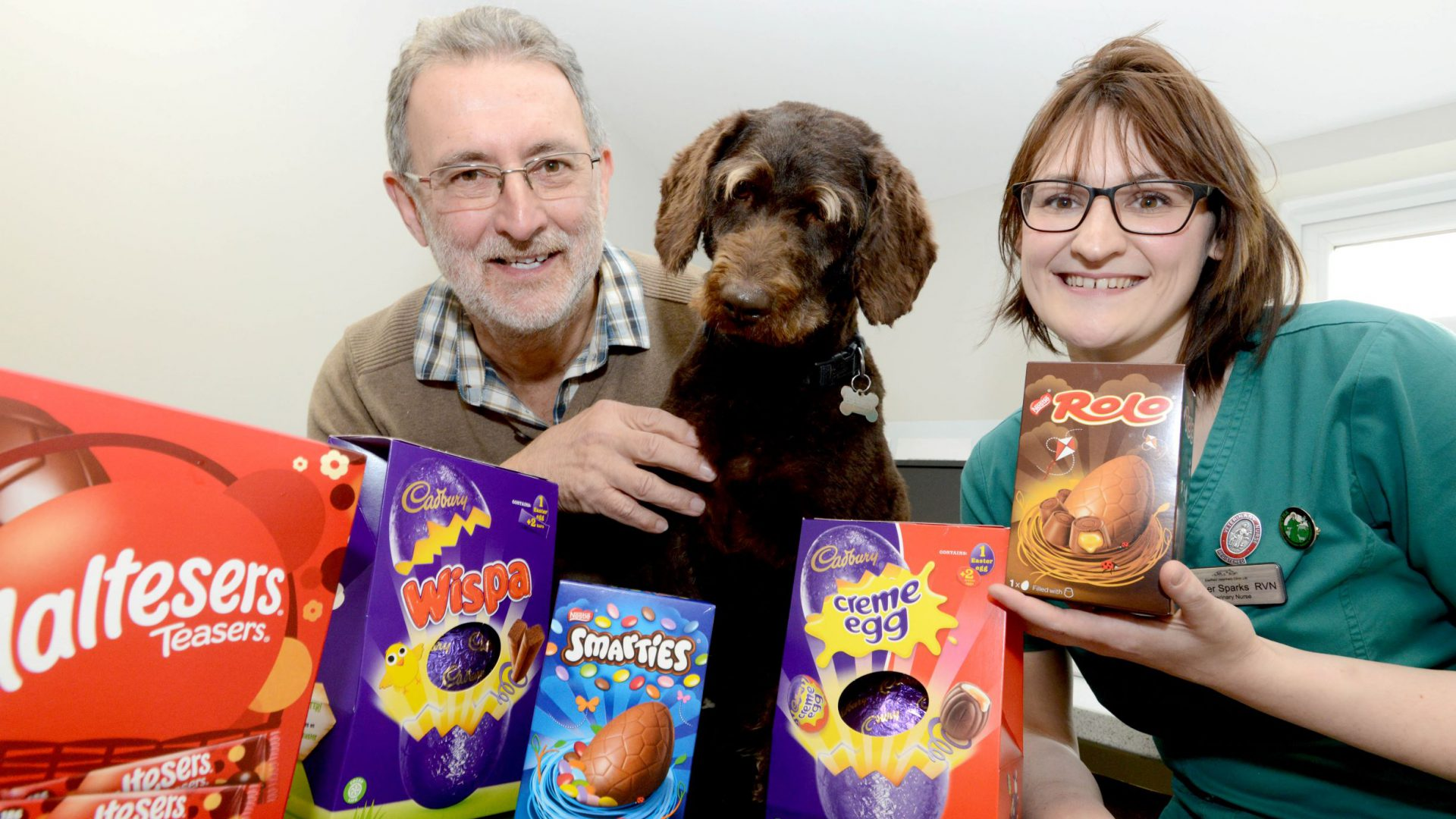 Chocs away! Vets warning to dog owners after Boseley guzzles Easter treats