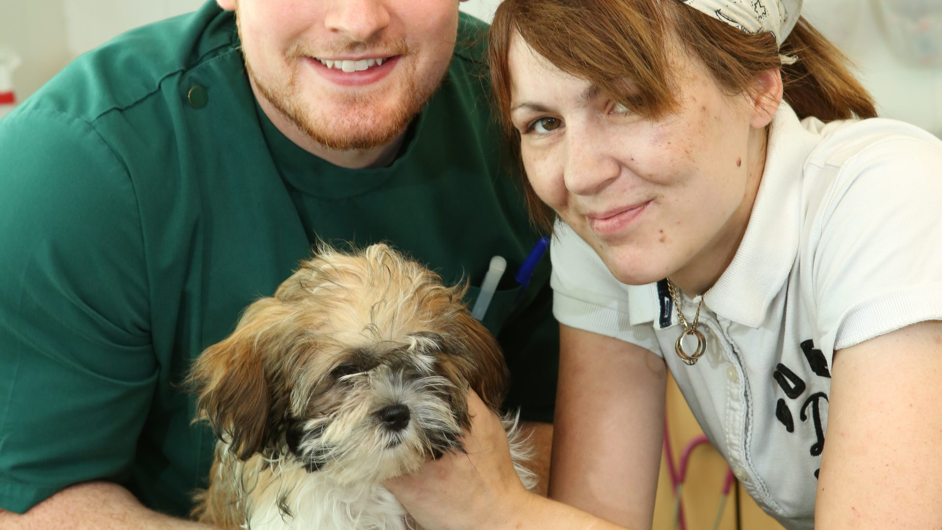 Puppy makes miracle recovery after massive drug overdose