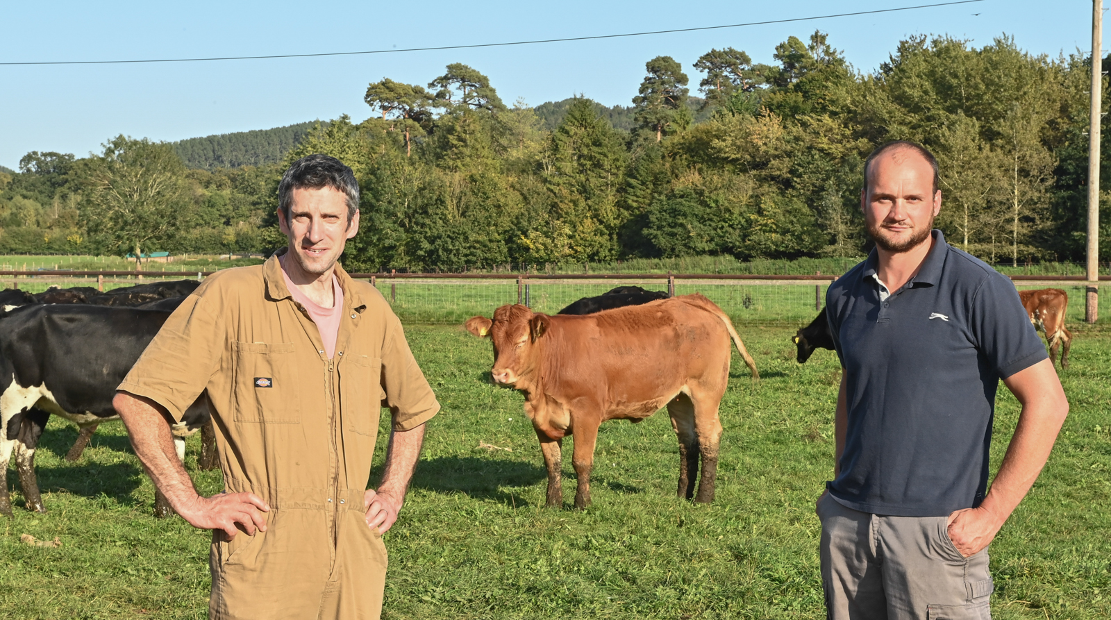 Boost for South West farmers as new vet practice is set to open its doors