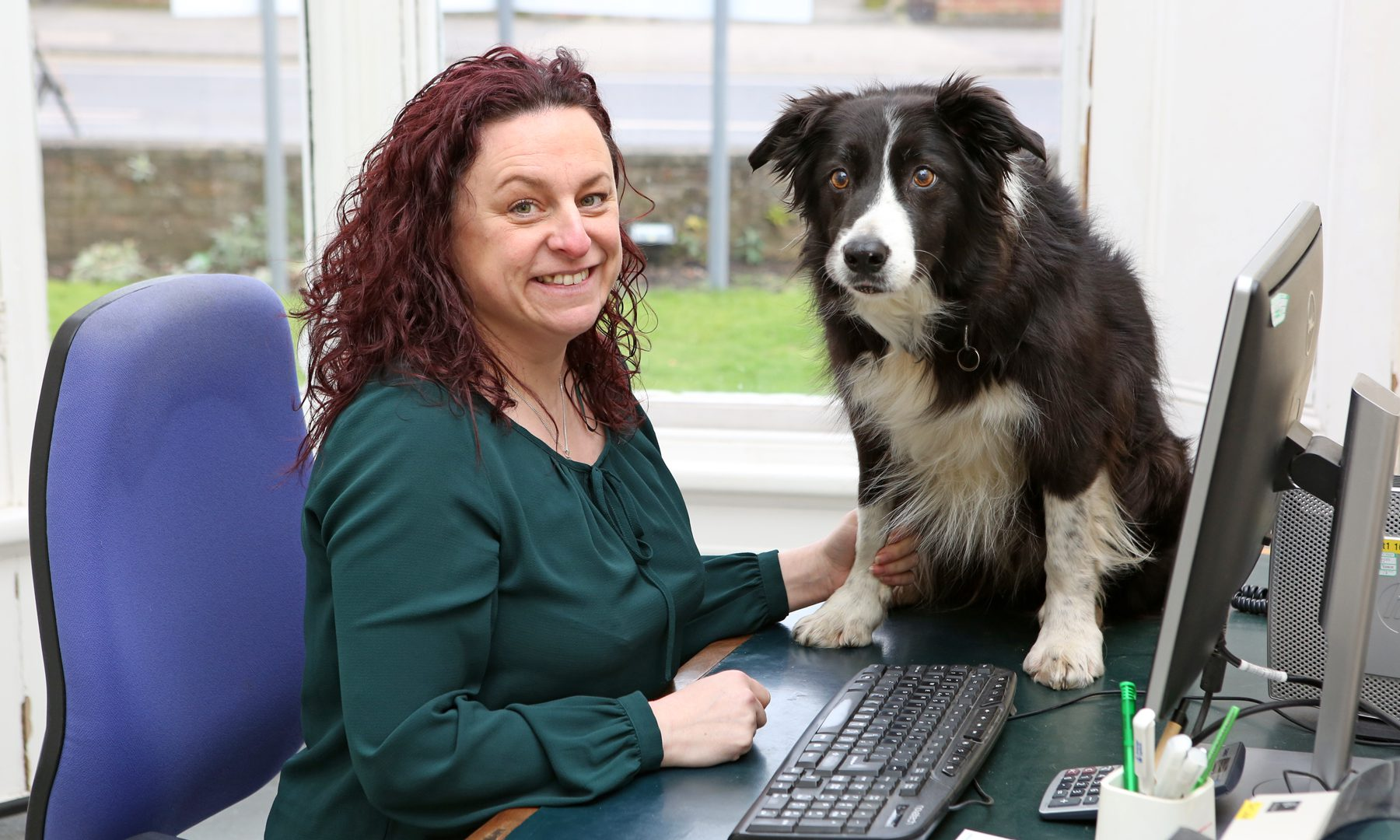 Lisa goes from kennel maid to managing one of York's biggest practices