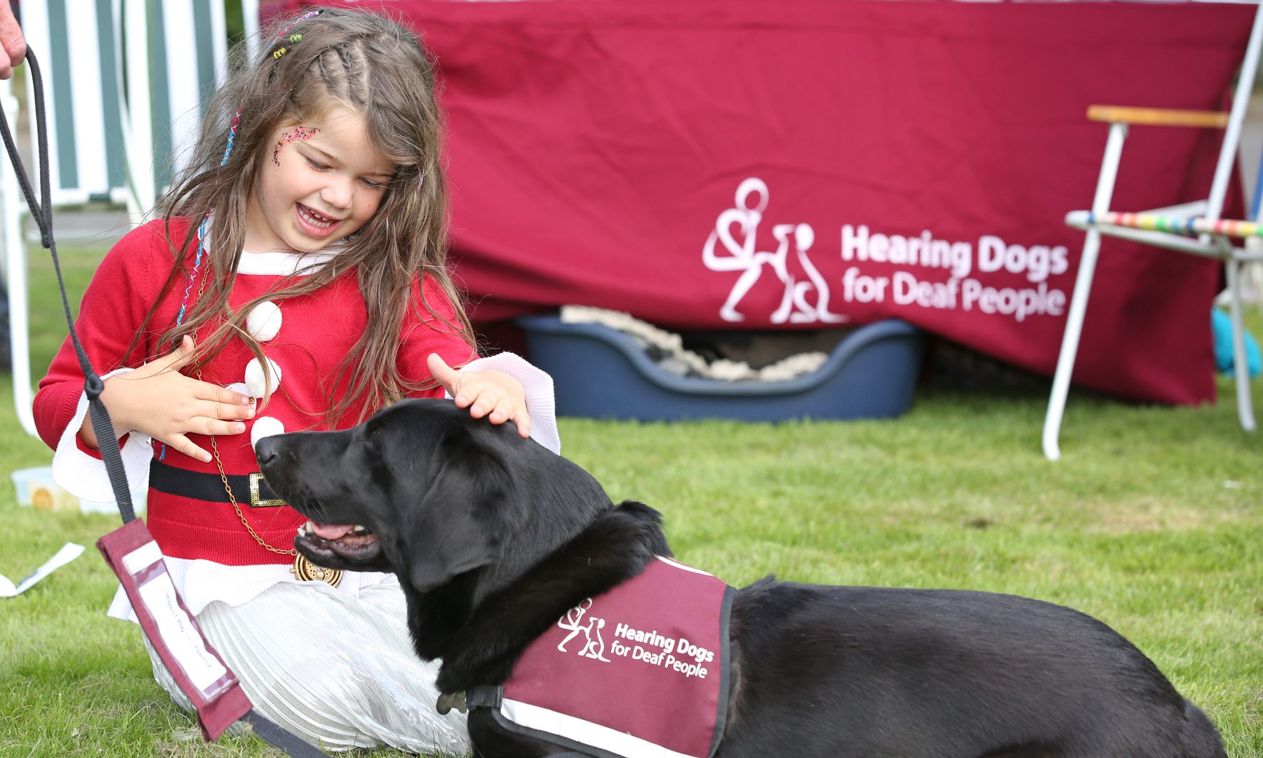 Fun in the sun raises funds for four-legged heroes