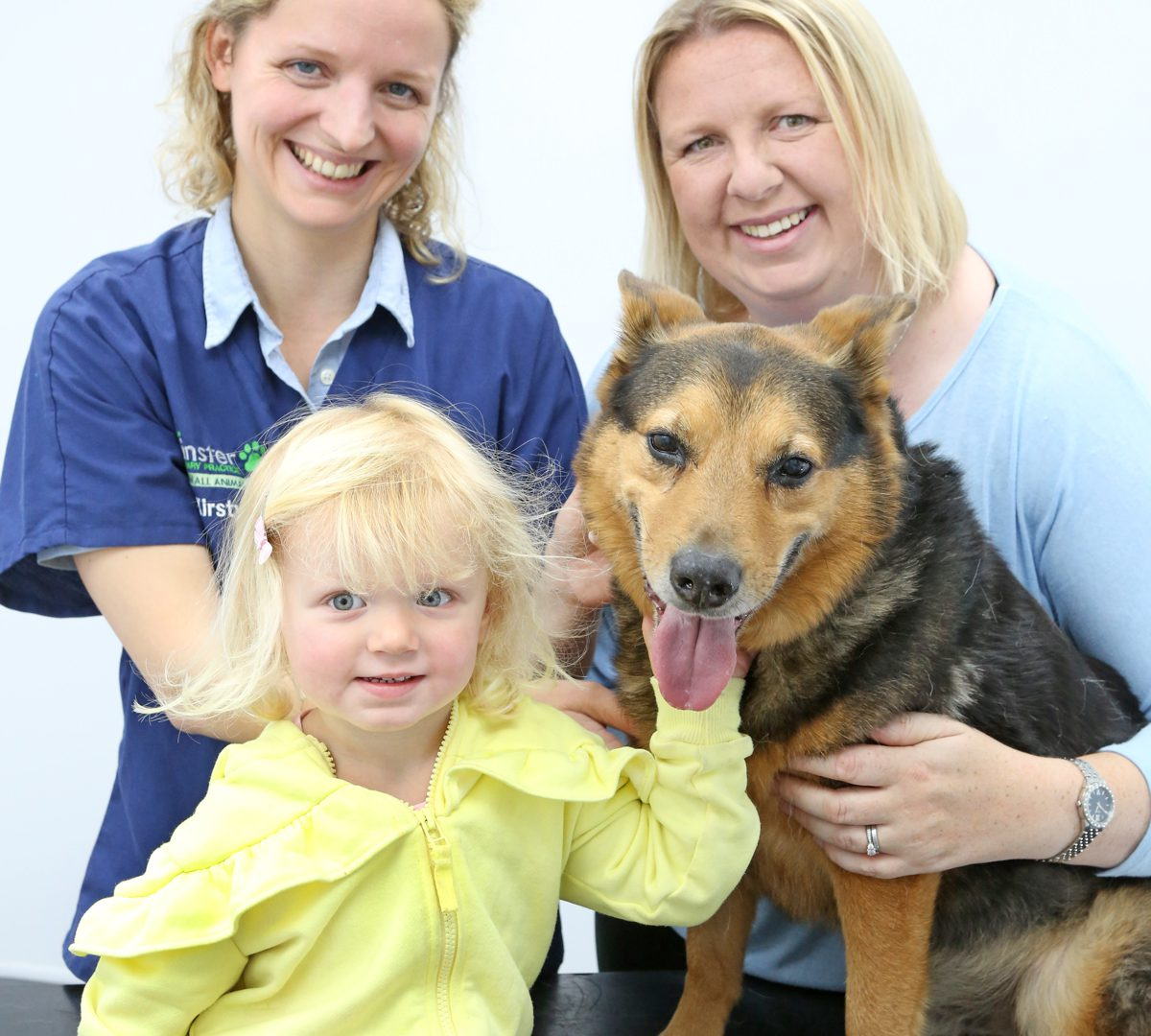 York vet operates on dog after swallowing kebab skewer