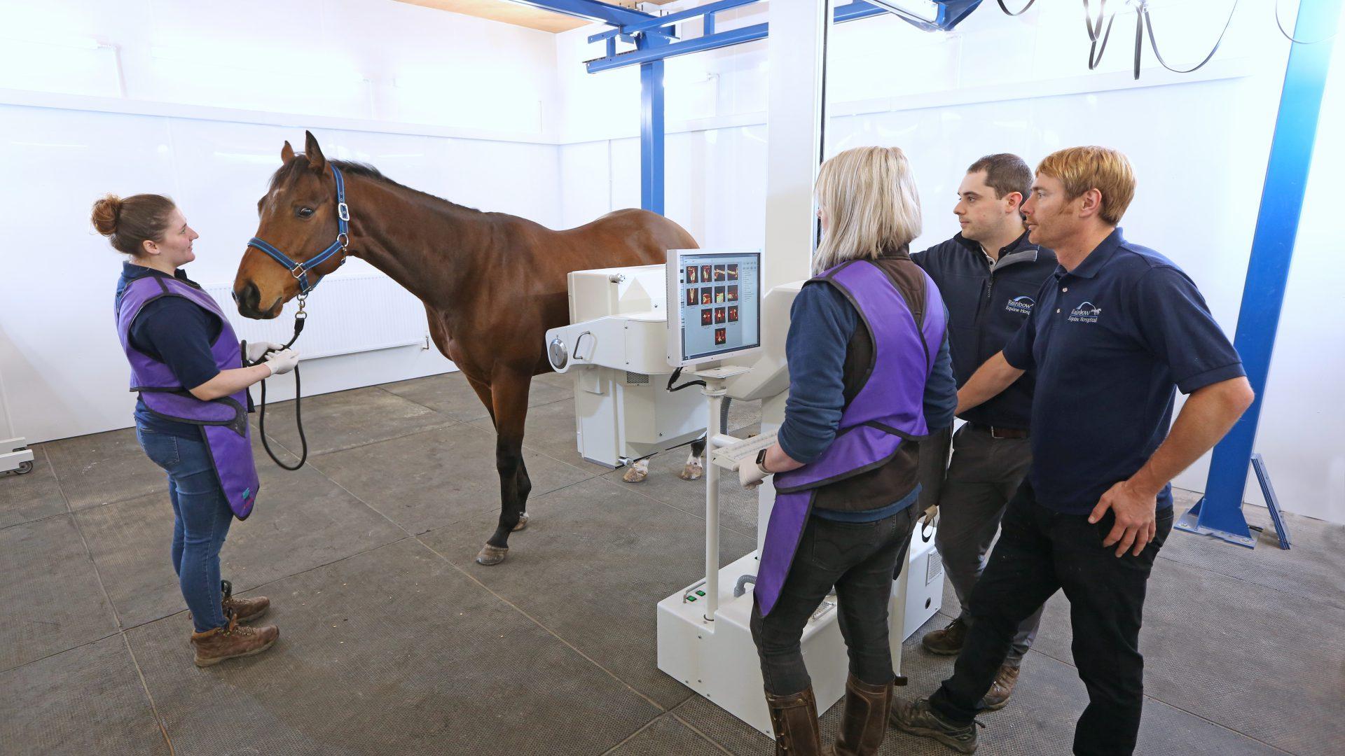 Malton equine hospital announces £230k investment in latest technology
