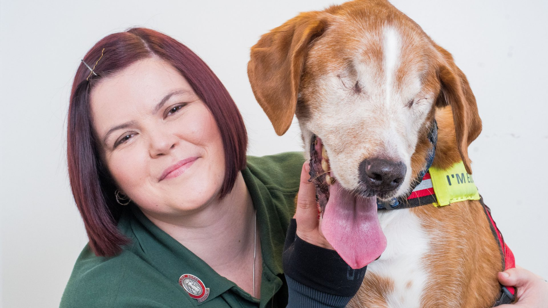 Happy dog Scully proves that love is blind after losing both his eyes