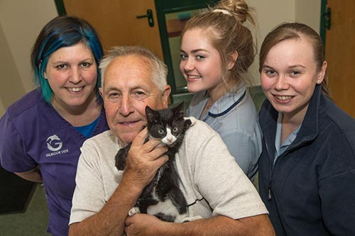 Stowaway kitten that hid under car bonnet recovers from horrific injuries to find new home