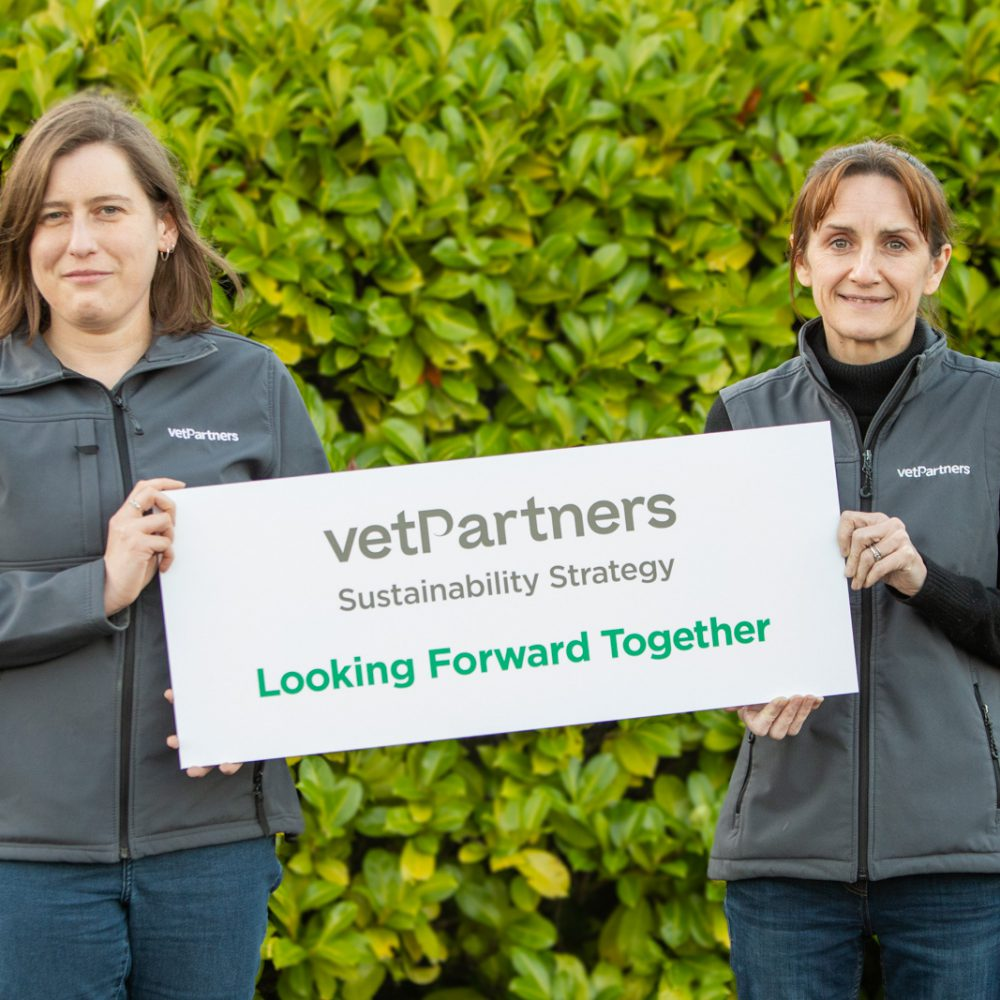 VetPartners commits to ambitious sustainability and charitable goals across its UK practices