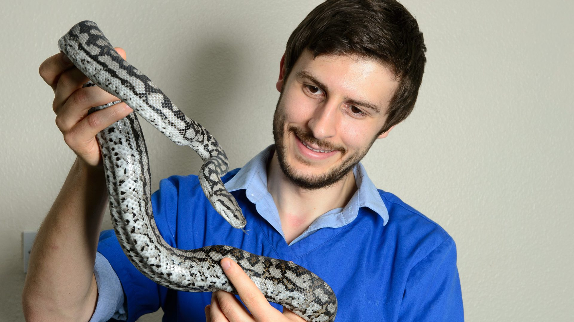 Exotics expert to treat everything from snakes to salamanders at new hospital