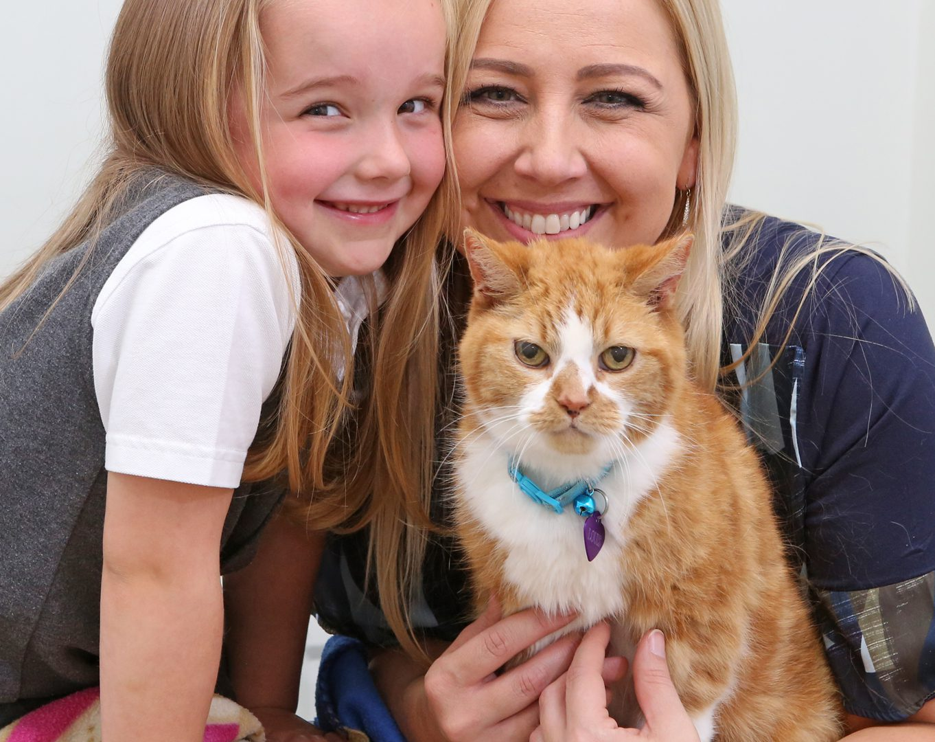 Loveable Louis with nine lives still thriving aged 16