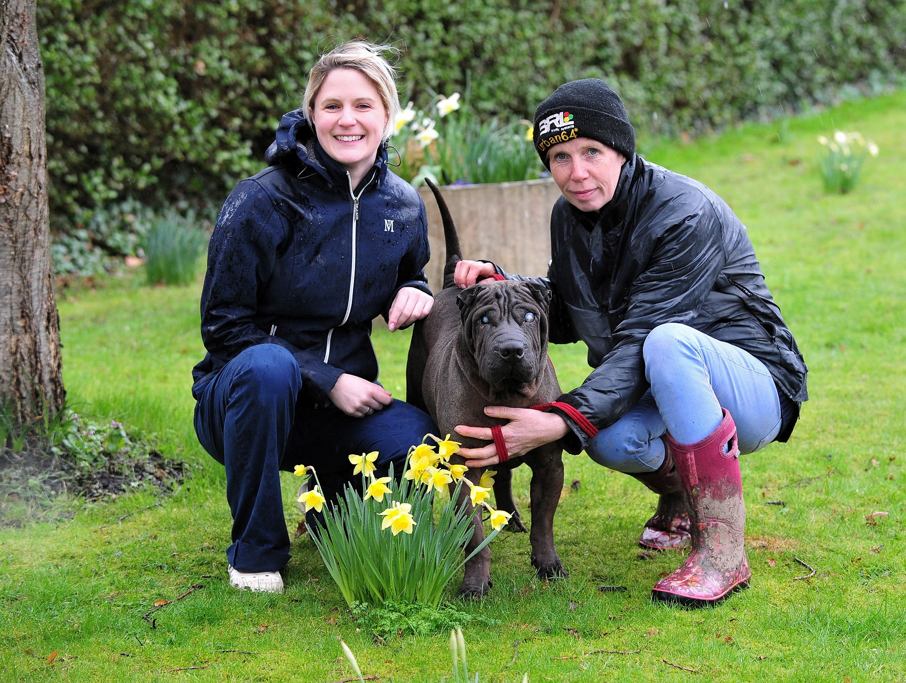 RVN Rachael McCooey (Left) with Berni Calladine from Wonky Pets, with Reggie, the blind Shar Pei, who has been treated at the Severn Vets