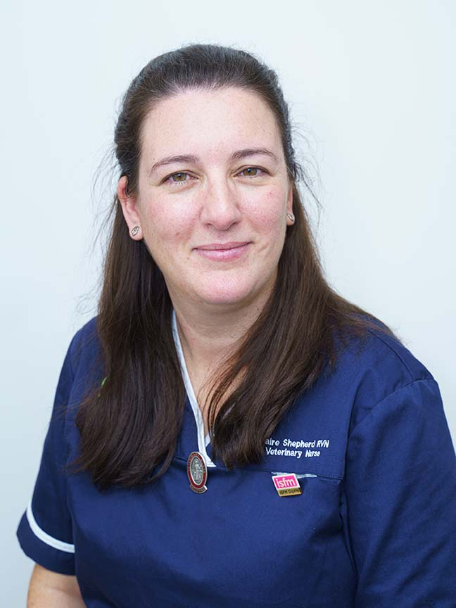 Celebrations at VetPartners as Claire is named Petplan Veterinary Nurse of the Year