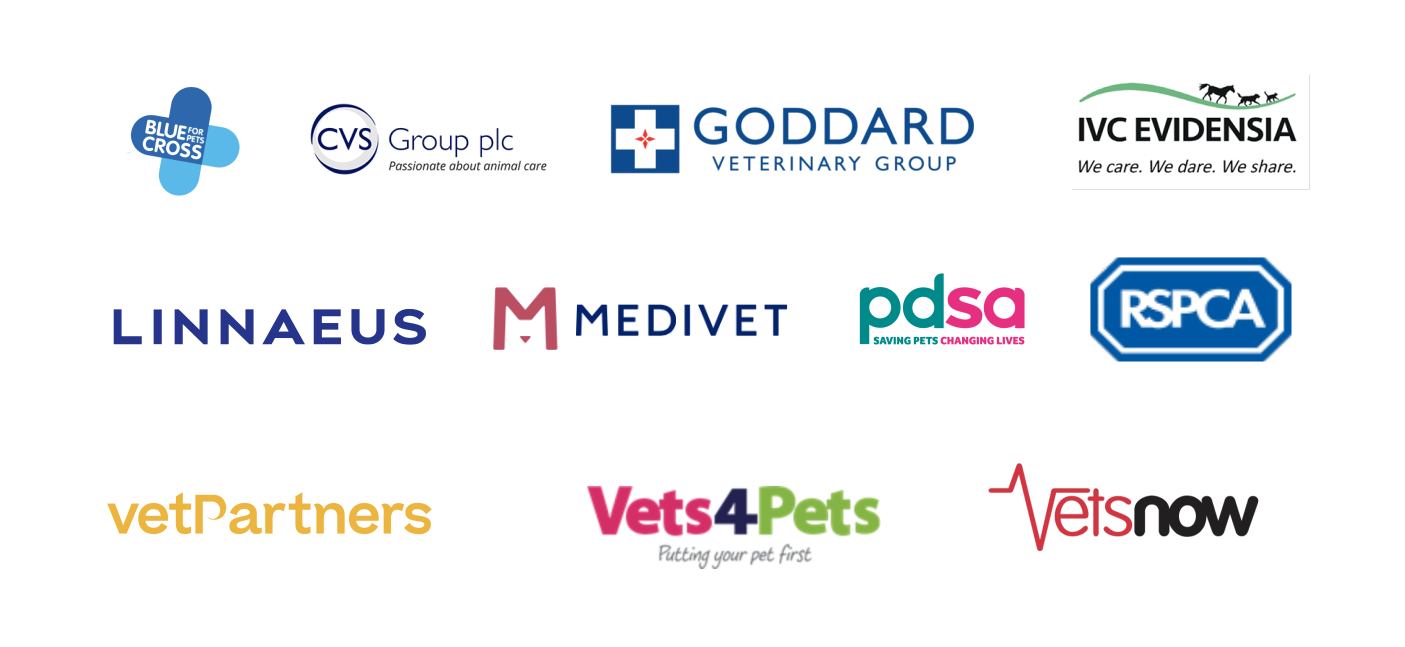 Vet groups and charities work together to continue care and support veterinary teams and clients during coronavirus