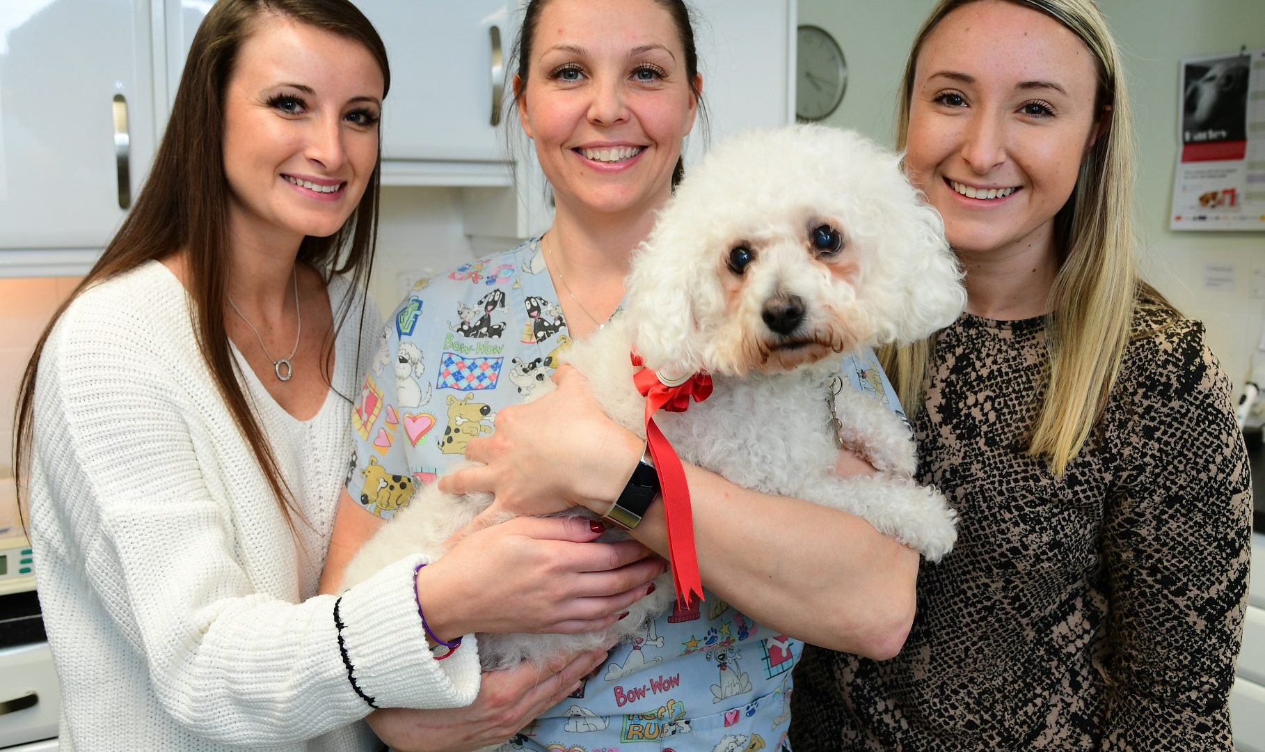 Mimram pooches in line to be UK's biggest weight losers
