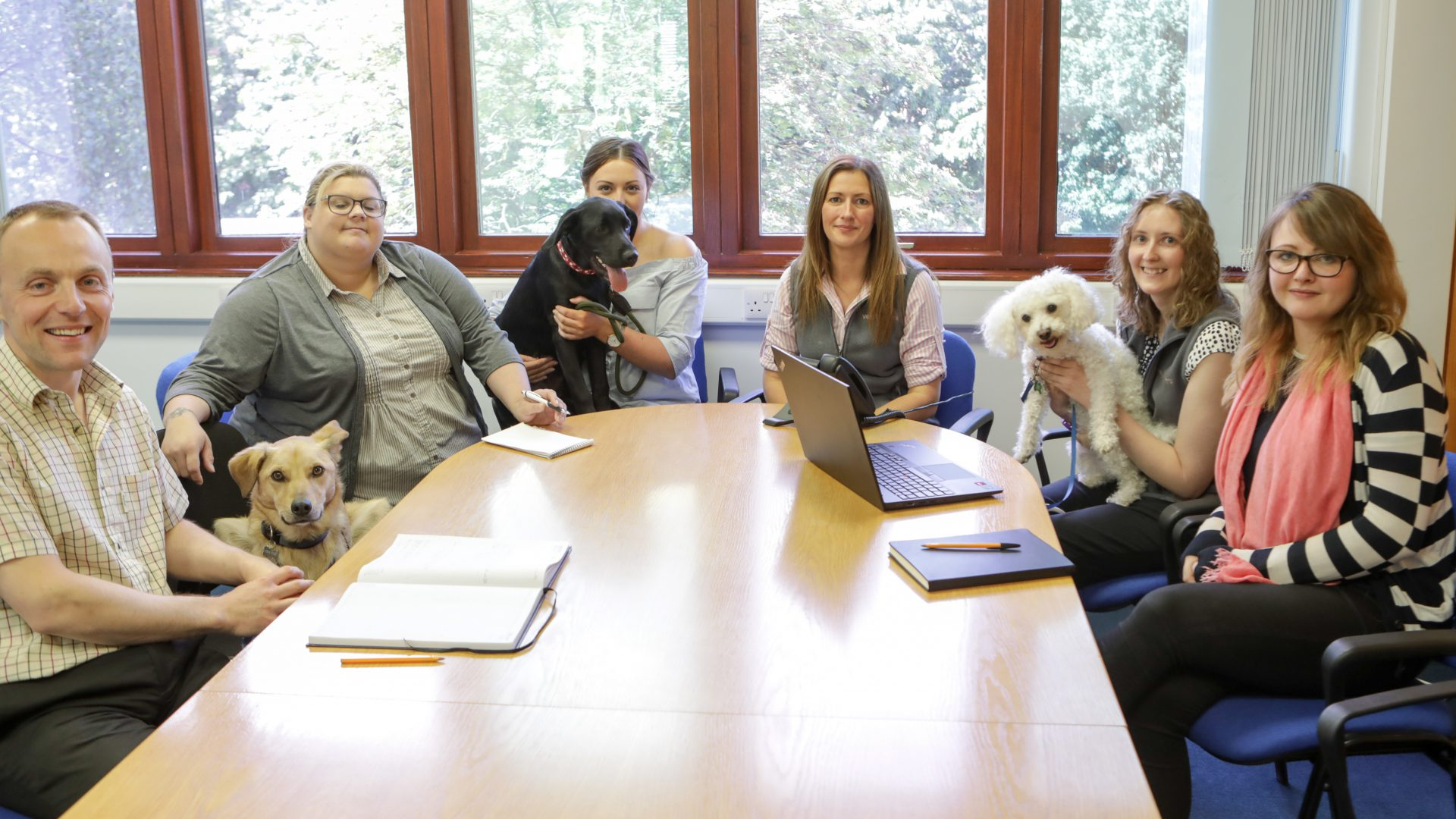 VetPartners team has dog of a day – but no one is complaining!
