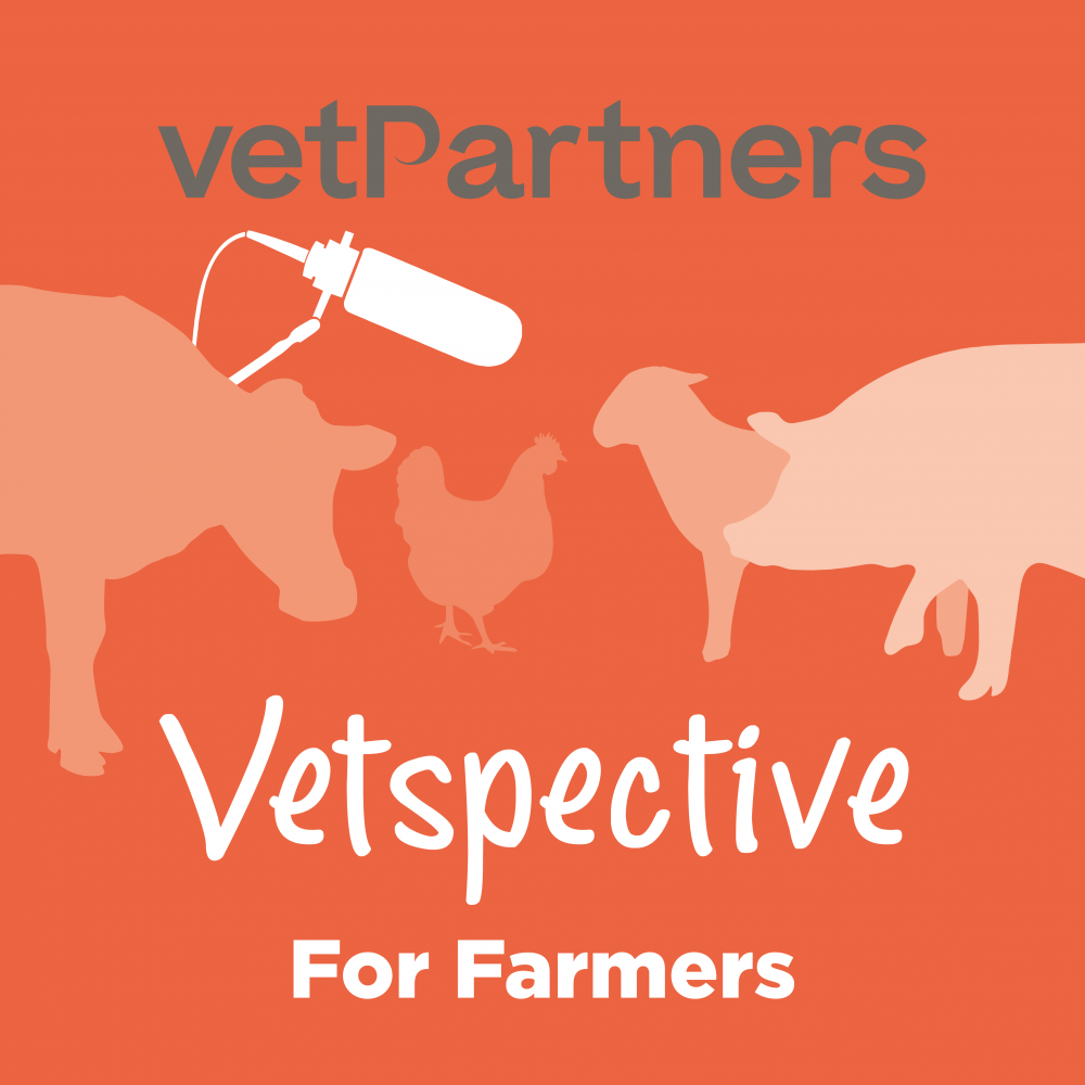 Transitioning to regenerative agriculture – a farmer's first hand experience