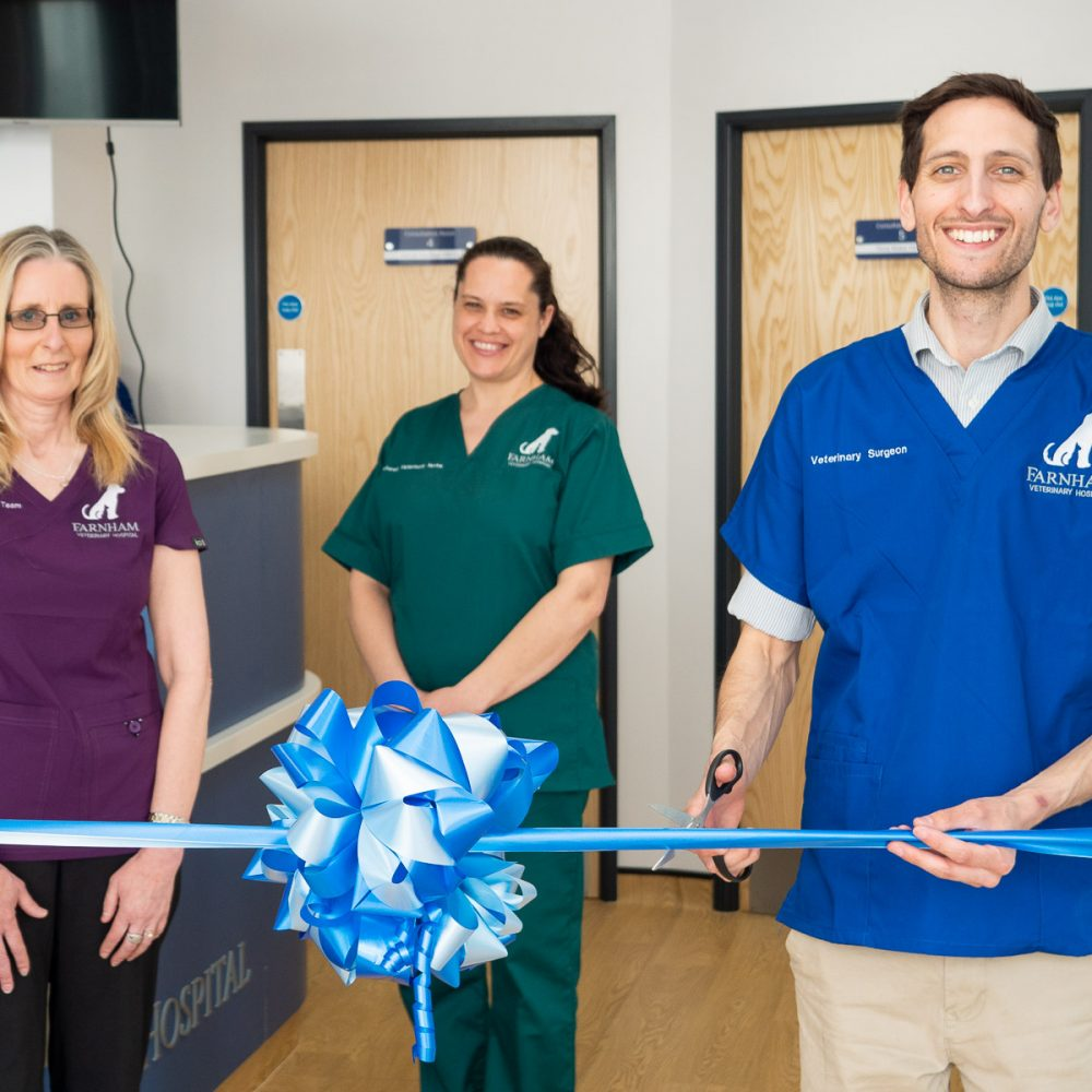 Showcase veterinary hospital opens its doors to poorly pets