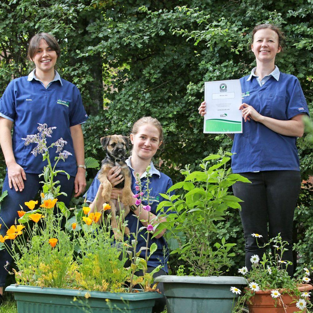 York veterinary practice lands environmental award
