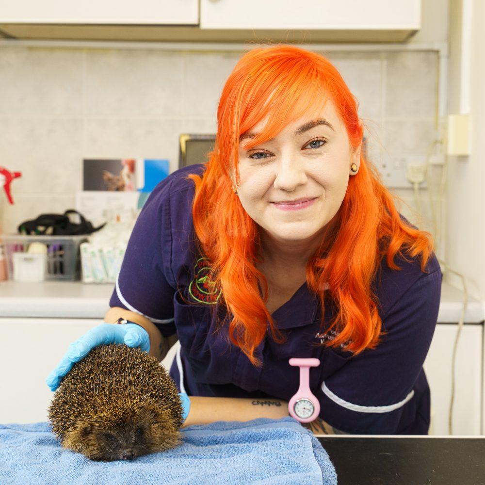 Caring vet nurse Ashley is bats about wildlife